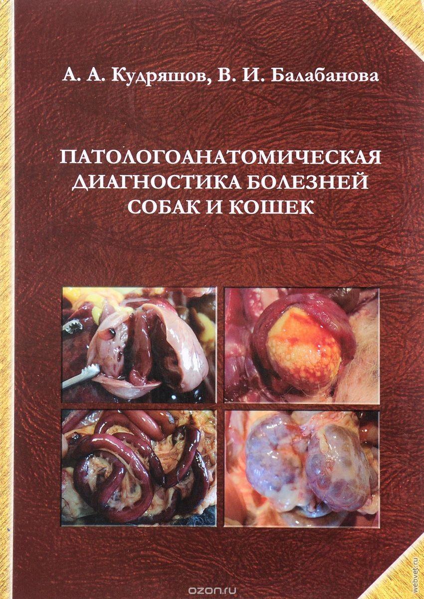 pdf Endocrinology