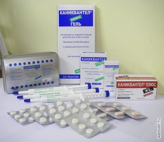 таблетки от глистов и паразитов