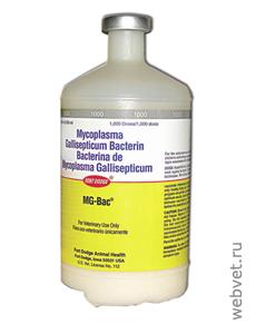 МГ-Бак - инструкция, описание, дозировка - Вакцины птицы - ветеринарный препарат